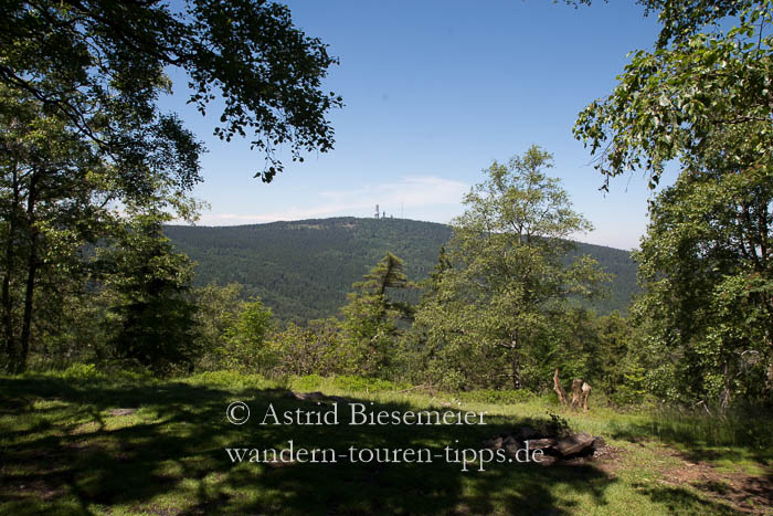 Blick vom Altkönig auf den höchsten Taunusgipfel: den Großen Feldberg.