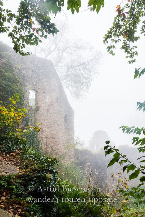 Bei Baden-Baden wandern: Ruine Schloss Hohenbaden im Nebel.