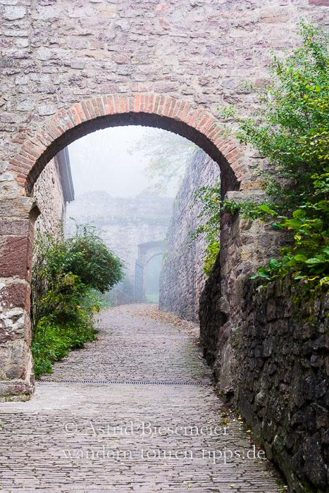 Mit dem Ebersteinburg-Rundweg zur Ruine Schloss Hohenbaden bei Baden-Baden wandern.