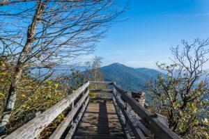 Bei Baden-Baden wandern: auf dem Ebersteinburg-Rundweg im Schwarzwald