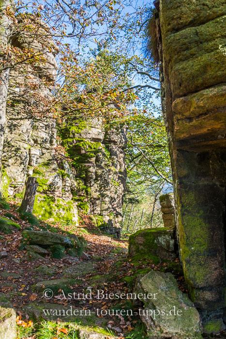 Bei Baden-Baden wandern: Der Ebersteinburg Rundweg führt durch die Felsenwelten des Battert.