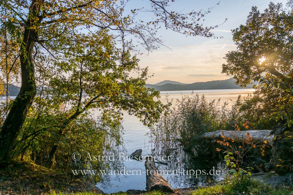 Tolle Blicke auf den Laacher See: bei einer Eifel-Wanderung durch Wolfsschlucht und über Traumpfade.