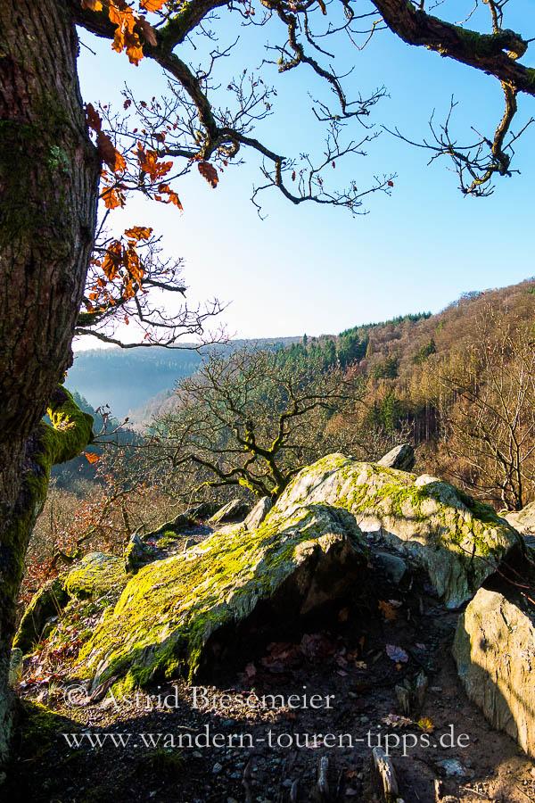 Wispertailsteig wandern: Aussicht vom Saurierfelsen.