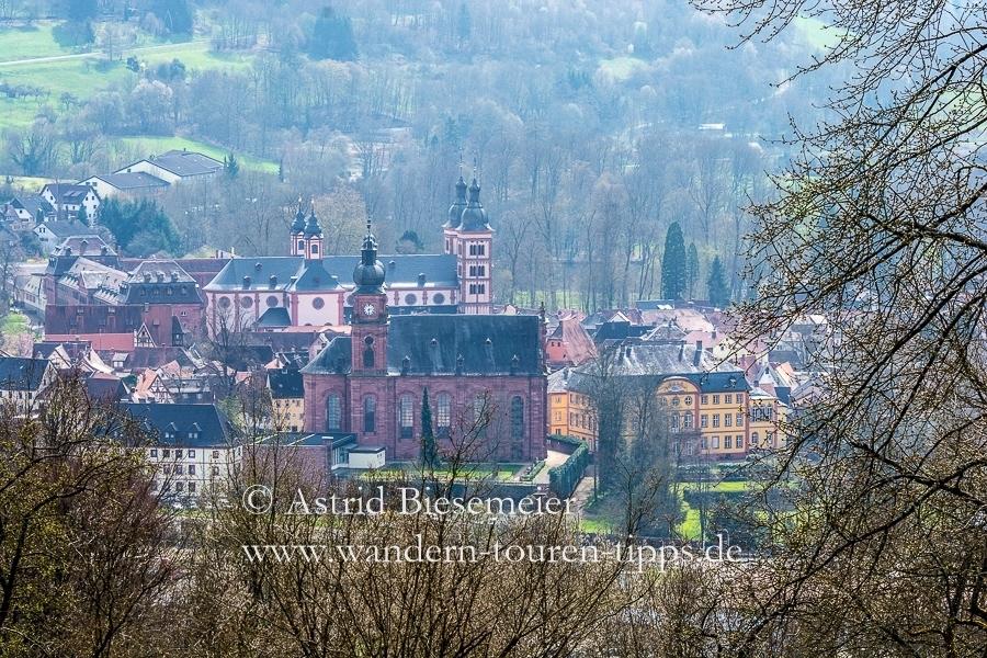 Odenwald wandern: Aussicht auf Amorbach vom Waldromantikweg (A9).