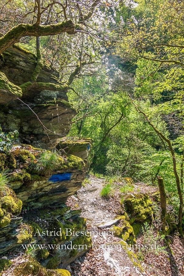 Wer auf dem Rheinsteig wandert - entdeckt auch bizarre Felsformationen.