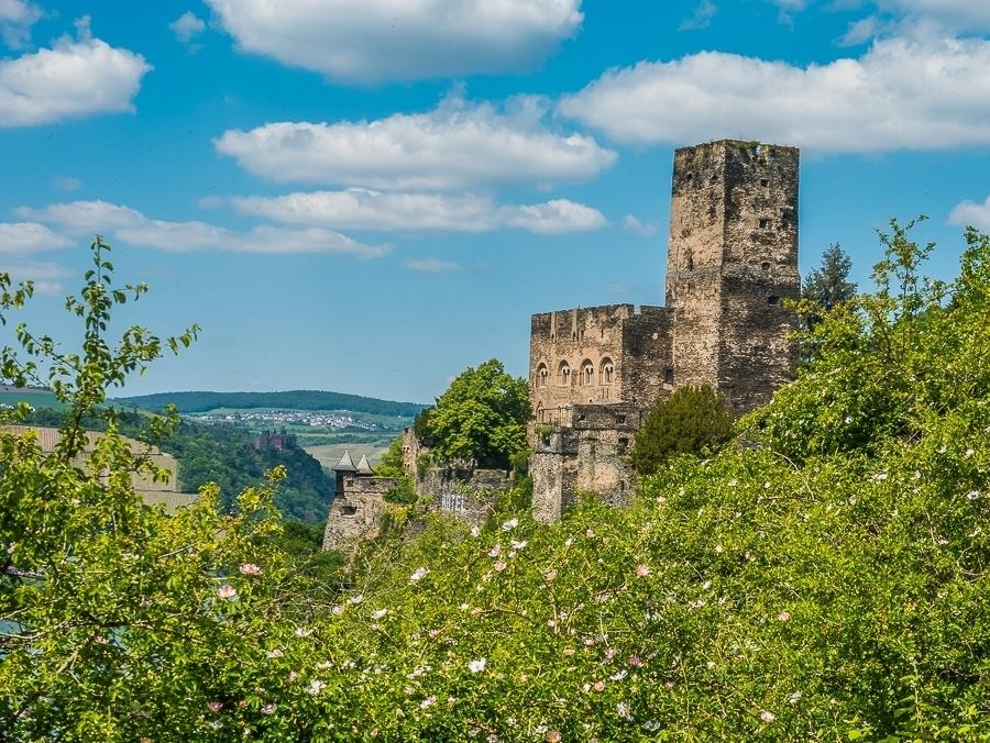 Rheinsteig wandern: von Kaub nach Lorch