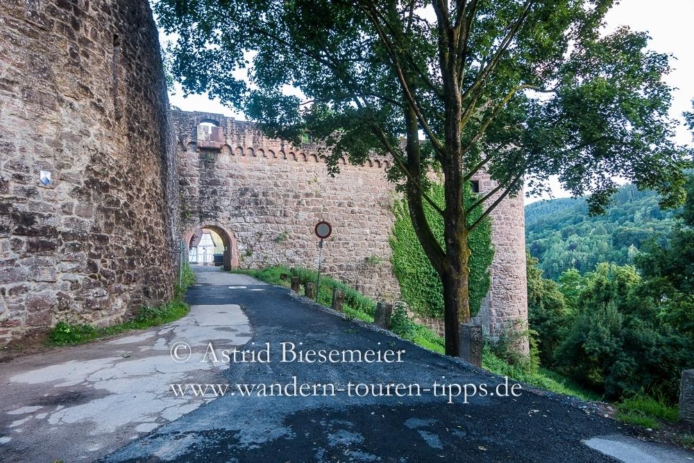 Gut erhaltene Burg & Waldklassenzimmer