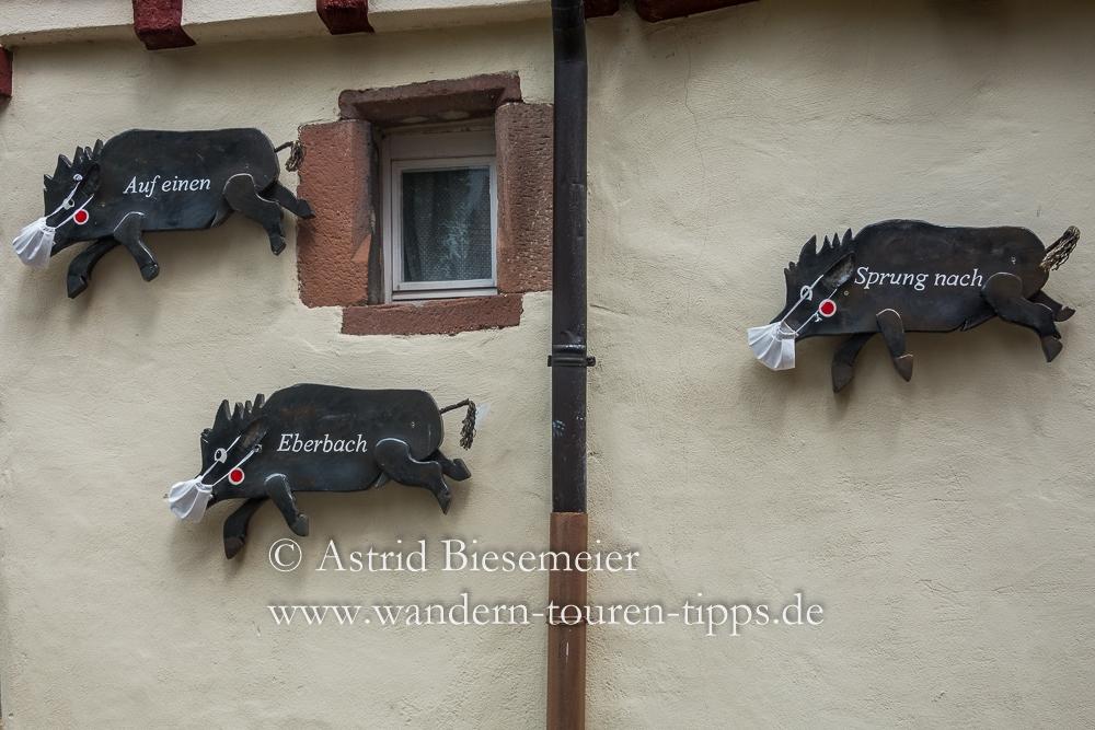 Auf Etappe 4 des Neckarsteig zieren Eber ein Haus in Eberbach