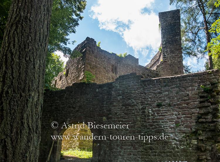 Zwei schöne Neckarsteig-Etappen wandern in einer: Burg Stolzeneck
