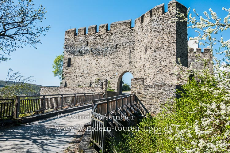 Rheinsteig wandern: Burg Sterrenberg
