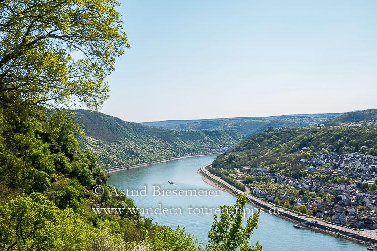 Die schönsten Rheinsteig-Etappen führen durch's UNESCO-Welterbe im Oberen Mittelrheintal