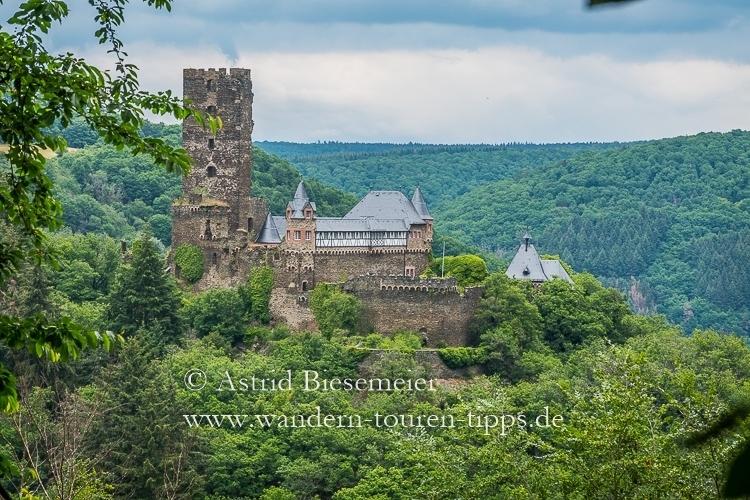 Auf dem Wispertaunussteig Burgen und ruhige Wälder genießen