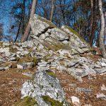 Durch keltische Welten im Taunus: Bleibeskopf-Wanderung