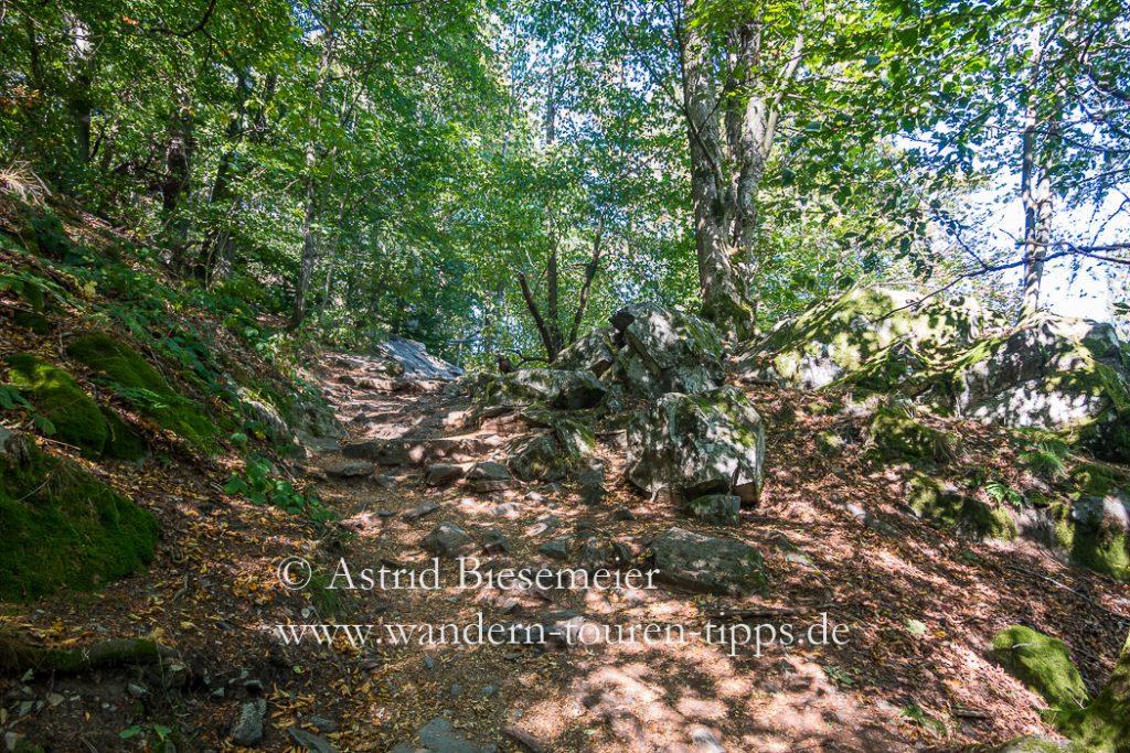 Die Wanderweg auf die Milseburg erfordert am einigen Stellen etwas Trittsicherheit.