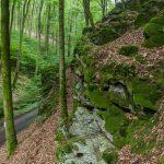 Rückersbacher Schlucht: wandern durch ehemals unruhiges Gebiet