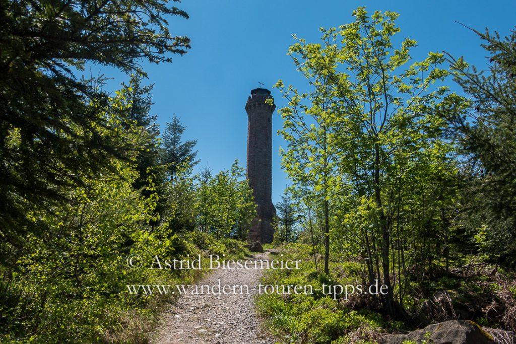 Ziel der Mooskopf-Wanderung: der Moosturm (manchmal auch als Mooskopfturm bezeichnet) auf dem Mooskopf