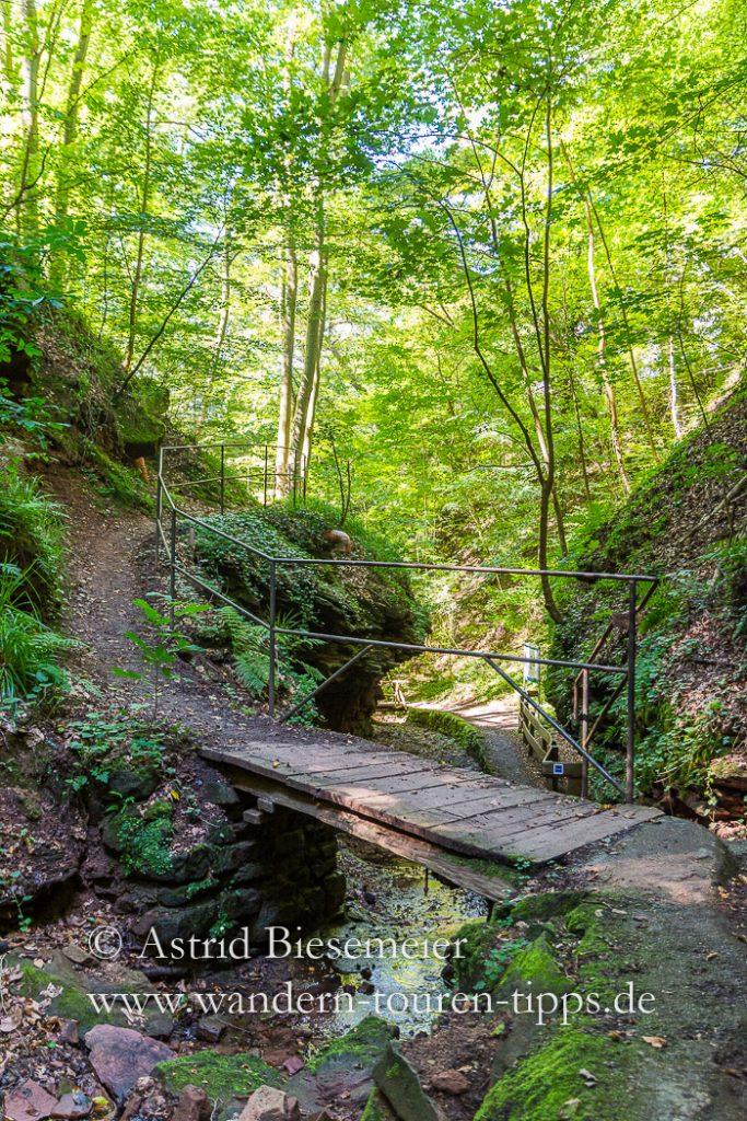 Bei einer Wanderung durch die Seltenbachschlucht passieren Wanderer zahlreiche kleine Brücken